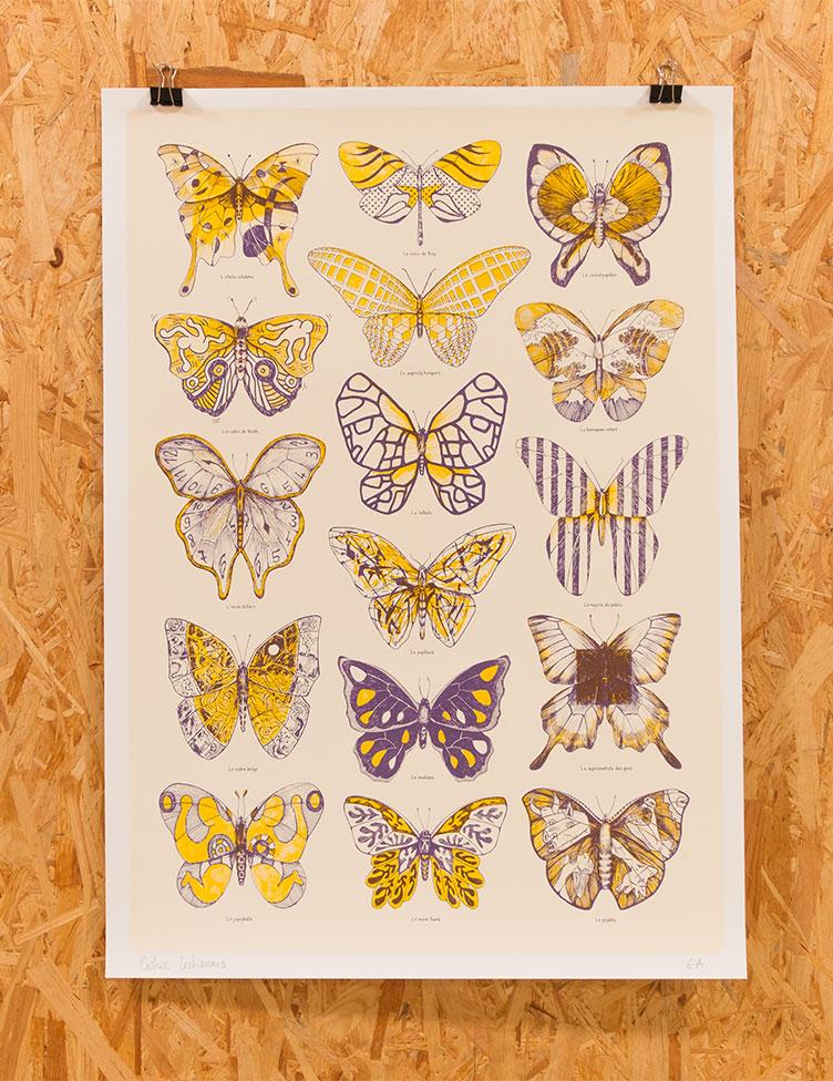 oasp-print-papillons-1