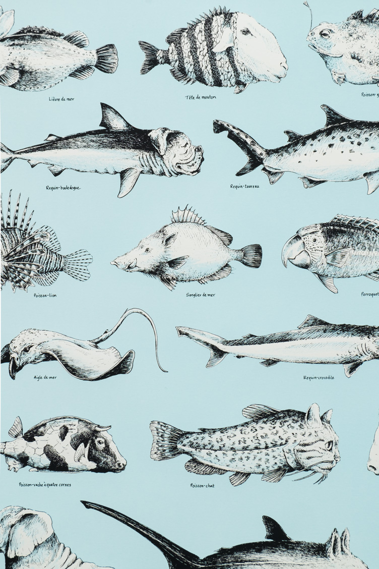 oasp-print-poissons-2