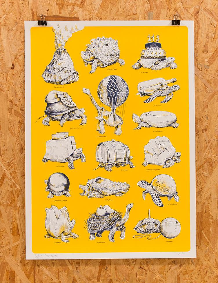 oasp-print-tortues2-1