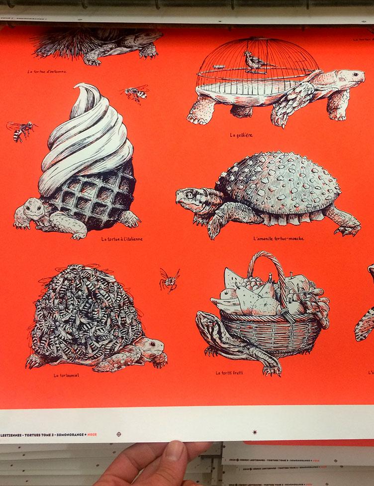 oasp-print-tortues3-2